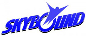 Megagiga Omni Corp/Skybound