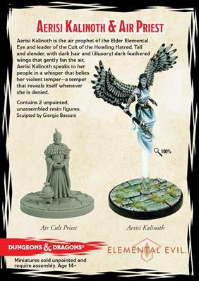 D&D Collector's Series: Aerisi Kalinoth, Warrior & Priest