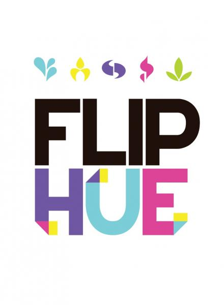 Flip Hue: A Game Of Double Standards