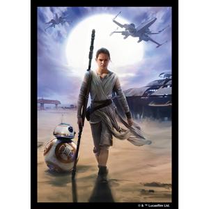 Star Wars: Rey Card Sleeves