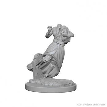D&D Nolzurs Marvelous Unpainted Minis: Ghosts
