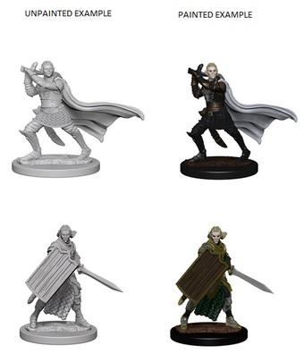 Pathfinder Battles Deep Cuts Unpainted Miniatures: Elf Male Paladin