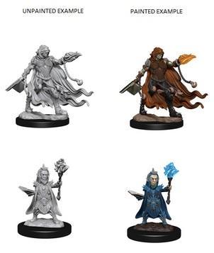 Pathfinder Battles Deep Cuts Unpainted Miniatures: Evil Wizards
