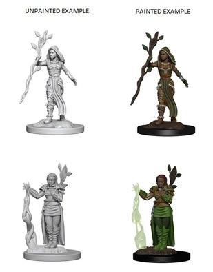 D&D Nolzurs Marvelous Unpainted Minis: Human Female Druid