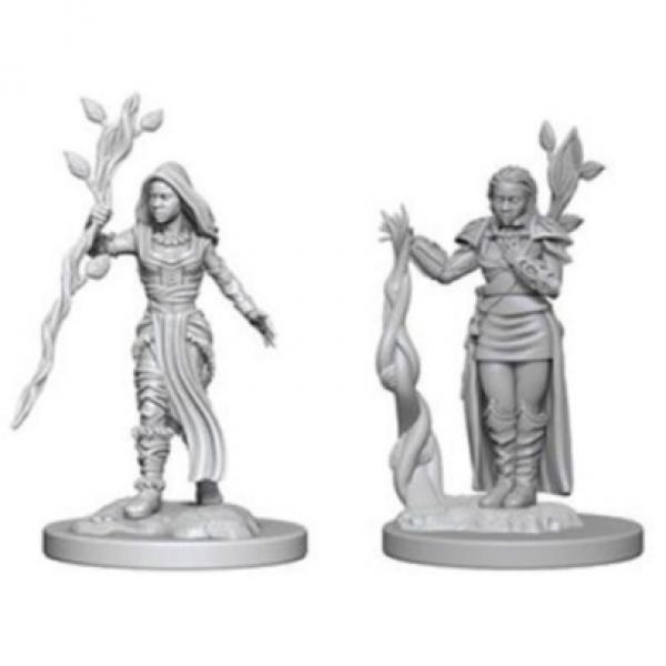 D&D Nolzurs Marvelous Unpainted Minis: Human Female Druid