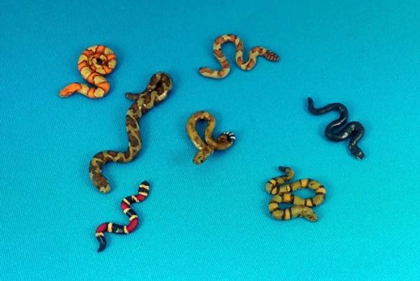The Curse of Dead Man's Hand: Snakes