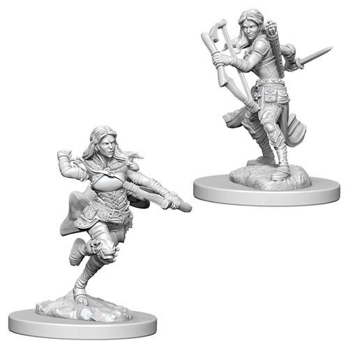 D&D Nolzurs Marvelous Unpainted Minis: Air Genasi Female Rogue