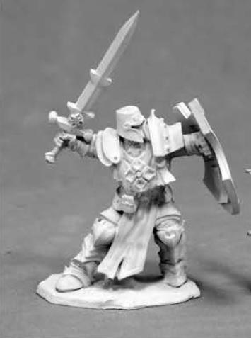 Dark Heaven Legends: Crusader Champion (1)