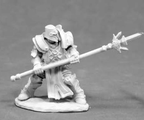 Dark Heaven Legends: Crusader Defender (1)