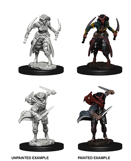 D&D Nolzurs Marvelous Unpainted Minis: Tiefling Female Rogue