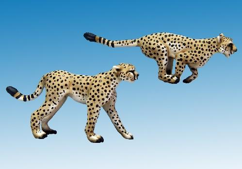 28mm Modern: North Star Africa - Cheetahs (2)