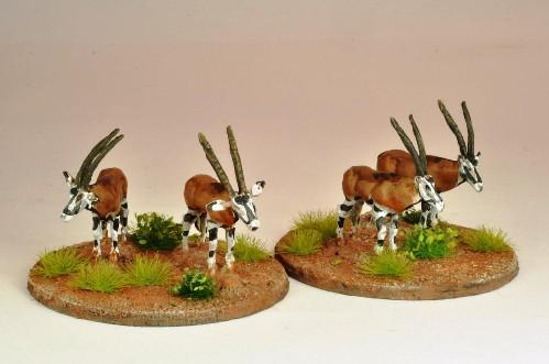 28mm Modern: North Star Africa - Oryx (5)