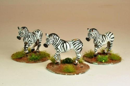 28mm Modern: North Star Africa - Zebra (5)