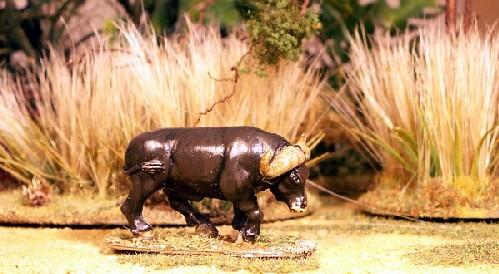 28mm Modern: North Star Africa - Cape Buffalo (A) (1)