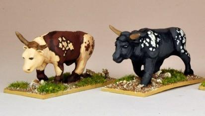 28mm Modern: North Star Africa - Oxen (2)