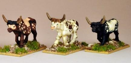 28mm Modern: North Star Africa - African Cattle (3)