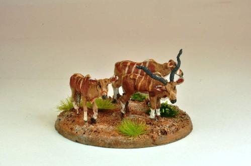 28mm Modern: North Star Africa - Kudu (5)