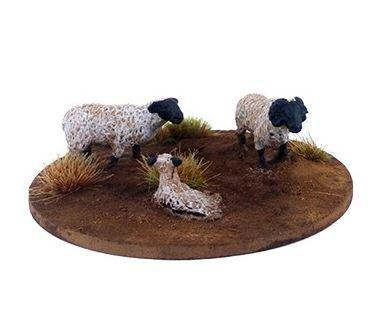 Dead Man's Hand: A Flock of Sheep (6)
