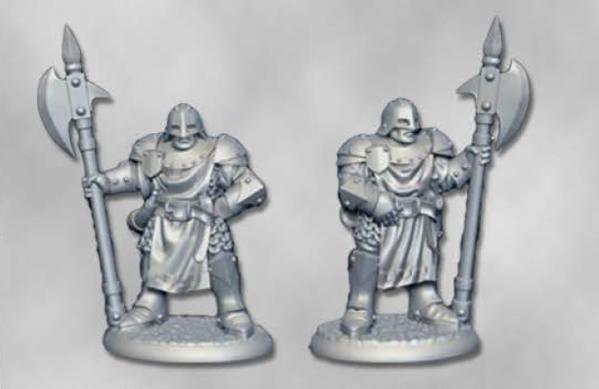 Dark Heaven Legends: City Guard (2)