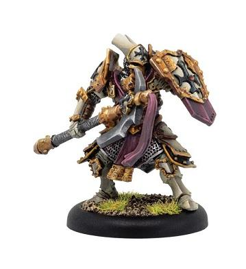 Warmachine: (The Protectorate Of Menoth) Exemplar Warder - Protectorate Solo (metal/resin) (1)