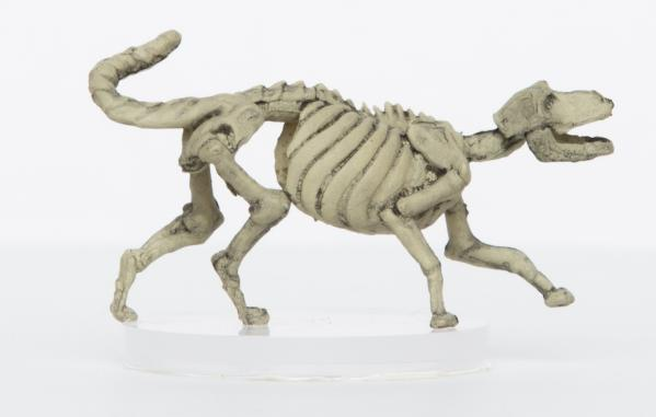 28mm Fantasy: Characters of Adventure - Skeleton Wolf (1)