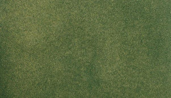 Woodland Scenics: (Hobby Accessory)  Geen Grass Mat (50'' x 100'')