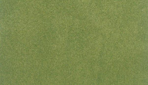 Woodland Scenics: (Hobby Accessory) Spring Grass Project Sheet (12 1/2'' x 14 1/8'')