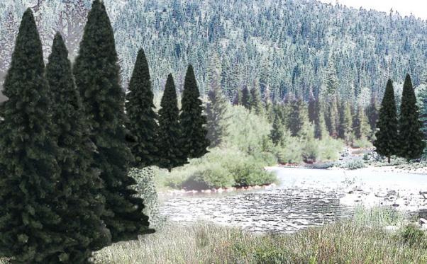 Woodland Scenics: Tree Kits - Evergreen Blend (13/pkg - 4'' - 6'')