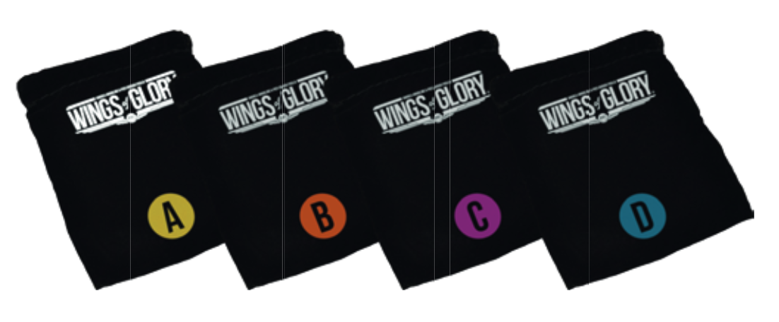 Wings Of Glory: WW2 Wings of Glory Damage Counter Bag Set