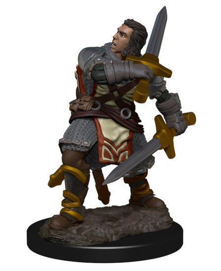 Dungeons & Dragons: Premium Pre-painted Miniatures - Human Male Paladin (1)