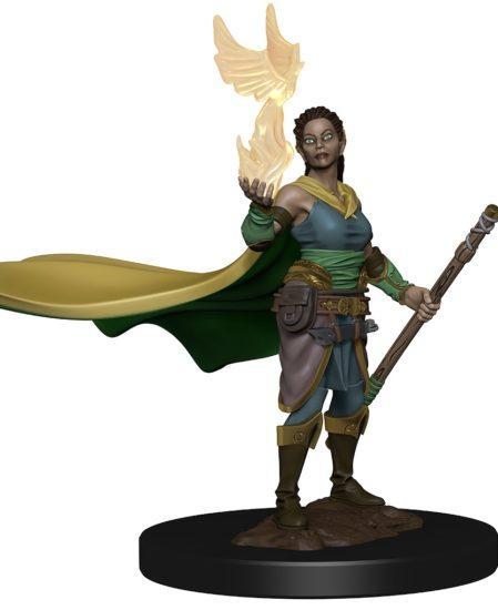 Dungeons & Dragons: Premium Pre-painted Miniatures - Elf Female Druid (1)