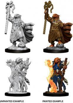 D&D Minis: Female Dragonborn Sorcerer