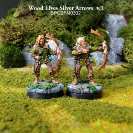 28mm Fantasy: Battle for Morten - Wood Elves Silver Arrows v.1