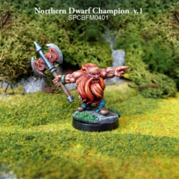 28mm Fantasy: Battle for Morten -  Northern Dwarf Champion v.1