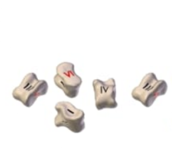 TALI: 5 Knuckle Bone Dice Only (1 Red)