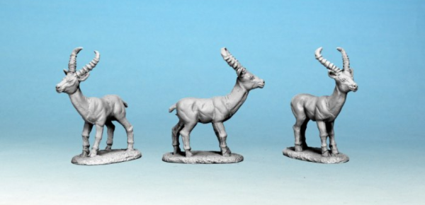 28mm Modern: North Star Africa - Antelope (5)