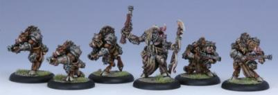 Hordes: (Minions) Farrow Brigands Unit