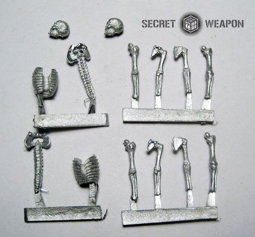 Human Skeleton (2)
