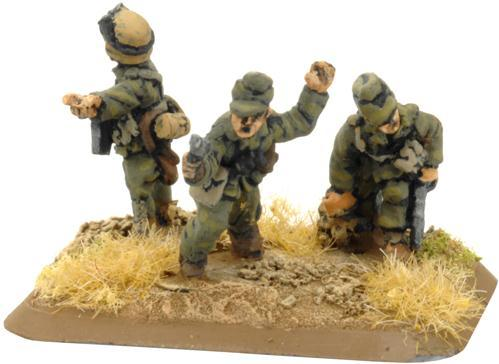 Flames of War: Pioneer Platoon (Afrika, 3)