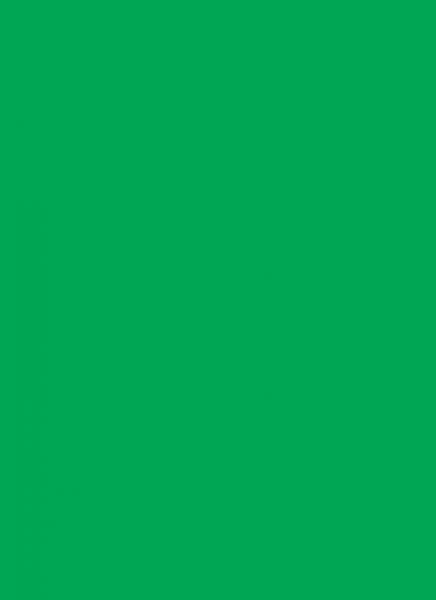 Legion: Double Matte Green Sleeves (50)